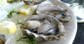 Impressive Gastronomy in Croatia - Fresh Oysters from Mali Ston bay