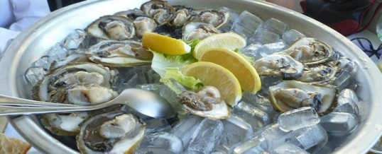 Unique Oysters Celebrated in Croatia