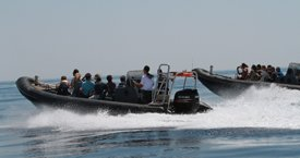 Trendy Group Activities In Croatia - Tornado Speed Boats
