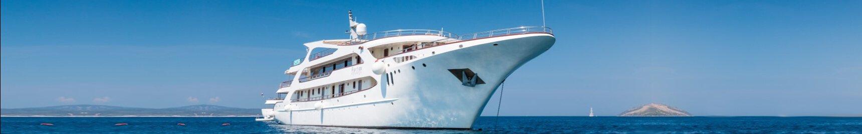 Corporate cruises cruise options